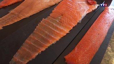 Fumer le saumon, une tradition qui se transmet en famille dans les Landes