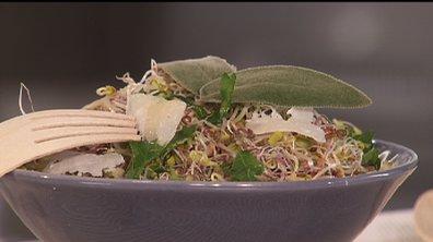 Salade aux germes de légumes et parmesan