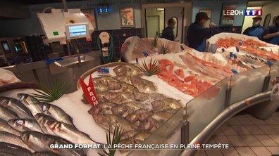 Grand format : la pêche française en pleine tempête