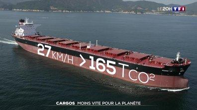 Grand format : les bateaux réduisent leur vitesse pour lutter contre la pollution