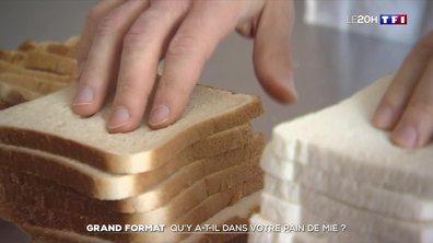 Grand format : qu'y a-t-il dans votre pain de mie ?