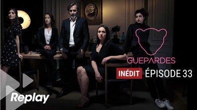 Guépardes - Episode 33 - Même si l'éléphant est maigre, il reste le roi de la forêt