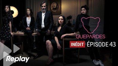 Guépardes - Episode 43 - L'ombre du zèbre n'a pas de rayures