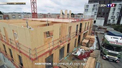 Habitation : la tendance des immeubles entièrement en bois