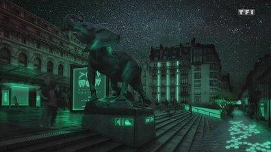 Habitons demain - La bioluminescence