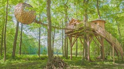 Habitons demain - Vivre en forêt