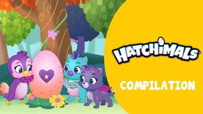 Compilation  Hatchimals  : tous les épisodes