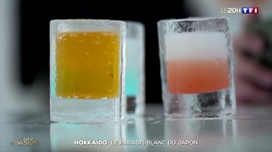 Hokkaido : le paradis blanc du Japon