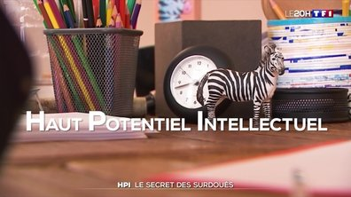 HPI : le secret des surdoués