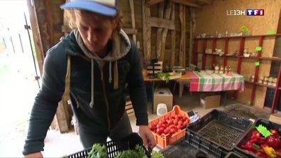 Incendie à Rouen : des pertes considérables pour les éleveurs picards