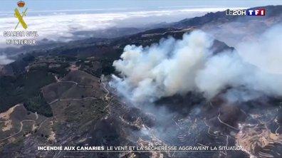 Incendie aux Canaries : le vent et la sécheresse aggravent la situation