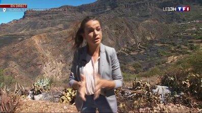Incendie aux Canaries : les risques de reprise de feu sont importants