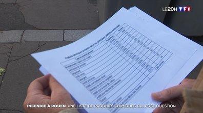 Incendie de l'usine Lubrizol à Rouen : la liste des produits chimiques pose question