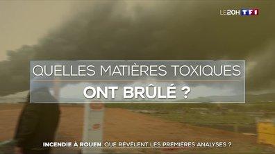 Incendie de l'usine Lubrizol à Rouen : questions sur la pollution et les analyses