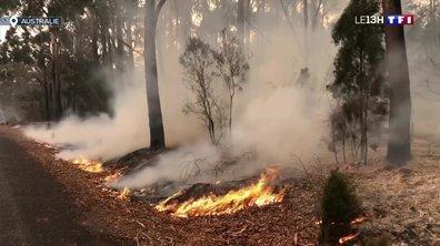 Incendie en Australie : la situation est toujours extrêmement critique