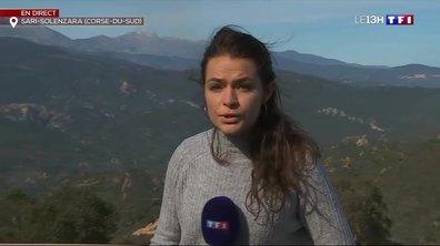 Incendie en Corse : des dizaines de foyers doivent encore être maîtrisés à Sari-Solenzara