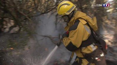 Incendie en Corse : le confinement a été levé à Sari