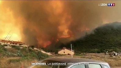 Incendie : la Sardaigne appelle à l'aide