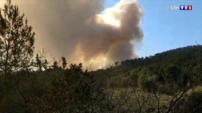 Incendie près de Marseille : la plupart des habitants d'Auriol de nouveau chez eux