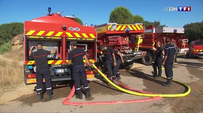 Incendies dans le Gard : les pompiers ont fait un travail acharné