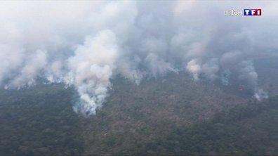 Incendies en Amazonie : des populations entières menacées