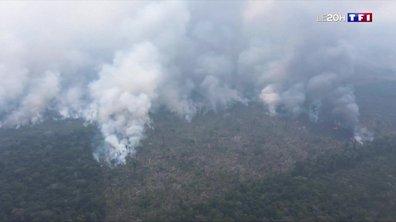 Incendies en Amazonie : l'armée en renfort