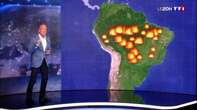 Incendies en Amazonie : quelle est l'ampleur des feux ?
