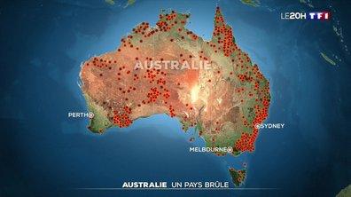 Incendies en Australie : le pays brûle