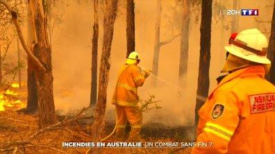 Incendies en Australie : un combat sans fin ?