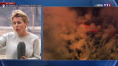 Incendies en Californie : les pompiers concèdent une forme d'impuissance