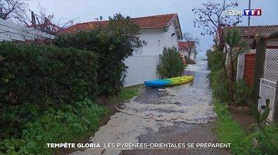 Inquiétude dans les Pyrénées-Orientales à l'approche de la tempête Gloria