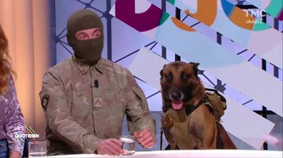 Invité : Djony, le chien héros qui a intercepté un terroriste