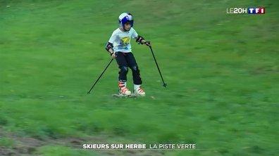 Italie : des skieurs… en herbe