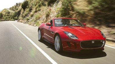 Plein Phare : Jaguar F-Type, la nouvelle star