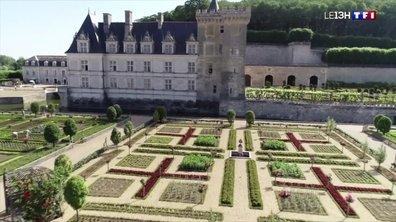 Jardins merveilleux : le domaine du château de Villandry