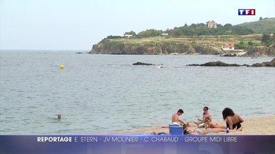 Argelès-sur-Mer : tout simplement le paradis !