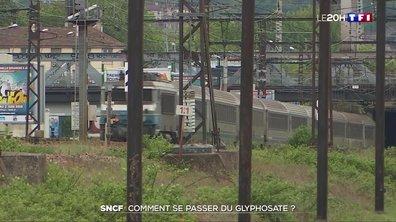 Casse-tête à la SNCF pour se débarrasser du glyphosate