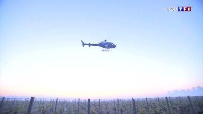 Gironde : des hélicoptères pour réchauffer l'air ambiant
