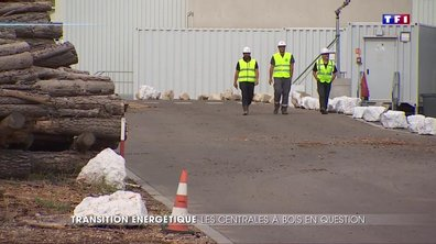 L'énergie biomasse, une filière encore sous-exploitée en France