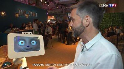 Robots : bientôt nos futurs collègues