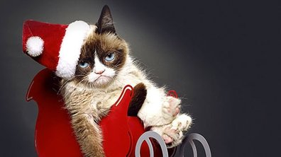Joyeux Noël Grumpy Cat!