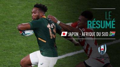 Japon - Afrique du Sud : Voir le résumé du match en vidéo