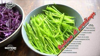 Juan régale : la recette des rouleaux vegan de Gojira