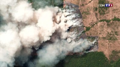 L'Amazonie ravagée par de violents incendies