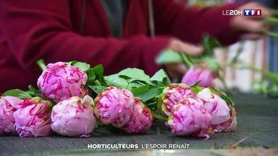 L'espoir renaît pour les horticulteurs, à l'approche de la Fête des mères
