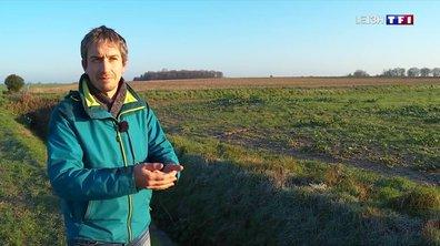 L'utilisation des pesticides près des cours d'eau fait débat
