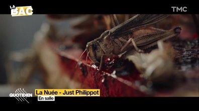 """La BAC : avec """"La Nuée"""", le film français renoue avec l'horreur"""
