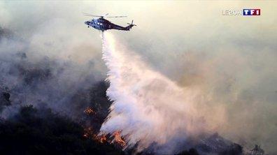 La Californie ravagée par les flammes : partir ou rester ?