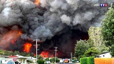 La côte est de l'Australie ravagée par des violents incendies