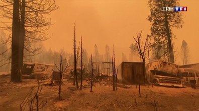 La côte Ouest des Etats-Unis ravagée par les flammes